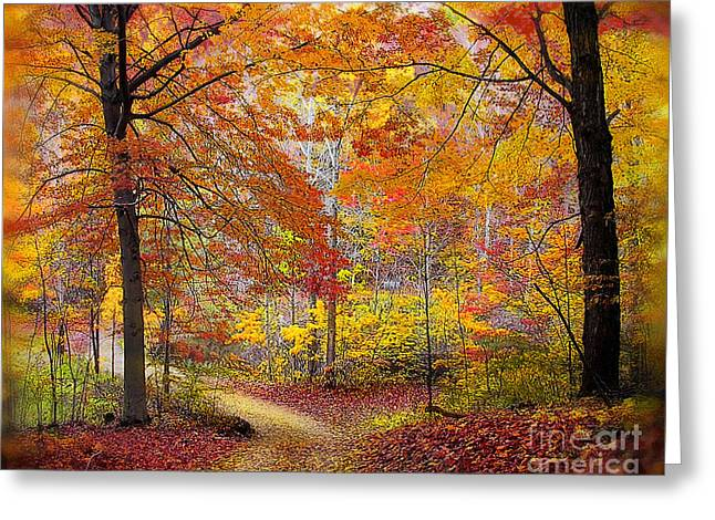 Country Lanes Digital Art Greeting Cards - Soft autumn rain Greeting Card by Gina Signore