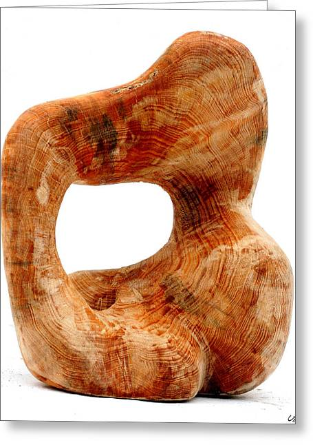 Wood Sculpture Greeting Cards - Sorprendido 3 Greeting Card by Jorge Berlato