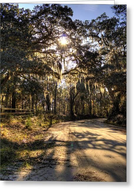 Moss Greeting Cards - Southern Oak Shadows  Greeting Card by Dustin K Ryan