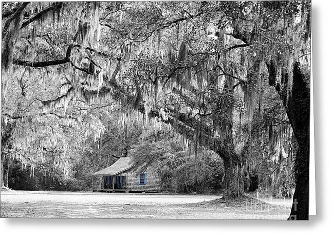 Cabin Window Digital Art Greeting Cards - Southern Shade Selective Color Greeting Card by Al Powell Photography USA