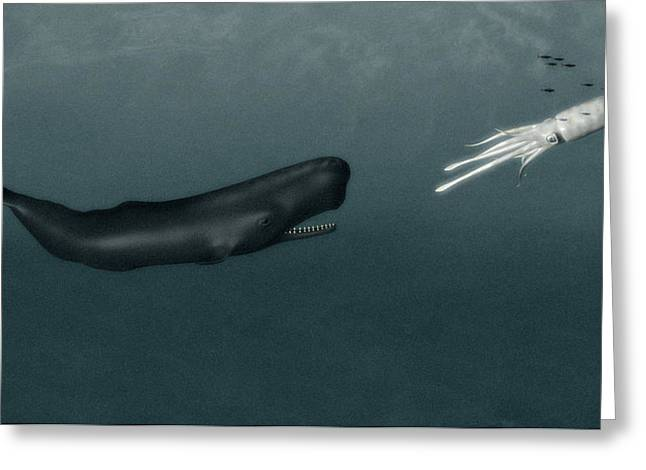 Giant Squid Greeting Cards - Sperm Whale And Giant Squid Greeting Card by Christian Darkin