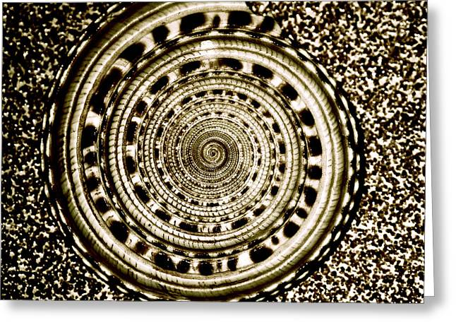 Brown Tone Greeting Cards - Spiral Greeting Card by HD Connelly