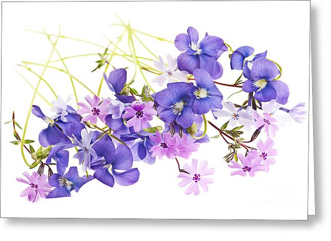 Spring Flowers Greeting Card by Elena Elisseeva