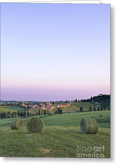 Bale Greeting Cards - Spring Hay Harvest Greeting Card by Rob Tilley