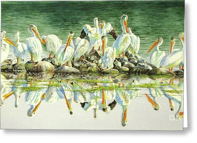 Pelican Paintings Greeting Cards - Standing Room Only Greeting Card by Greg Halom