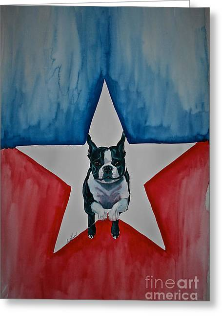 Boston Terrier Watercolor Greeting Cards - Star Appeal Greeting Card by Susan Herber