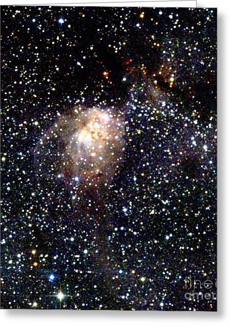 Stellar Evolution Greeting Cards - Star Forming Region Greeting Card by 2MASS project / NASA