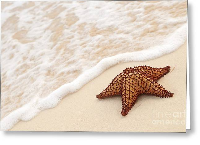Warm Summer Greeting Cards - Starfish and ocean wave Greeting Card by Elena Elisseeva