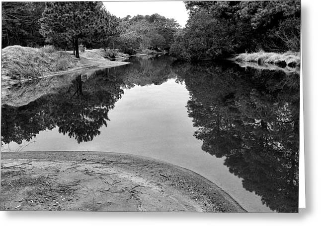 Stream Framed Prints Greeting Cards - Still Waters Greeting Card by Steven Ainsworth