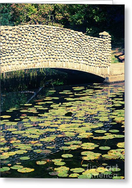 Stone Bridge Greeting Cards - Stone Bridge Greeting Card by HD Connelly