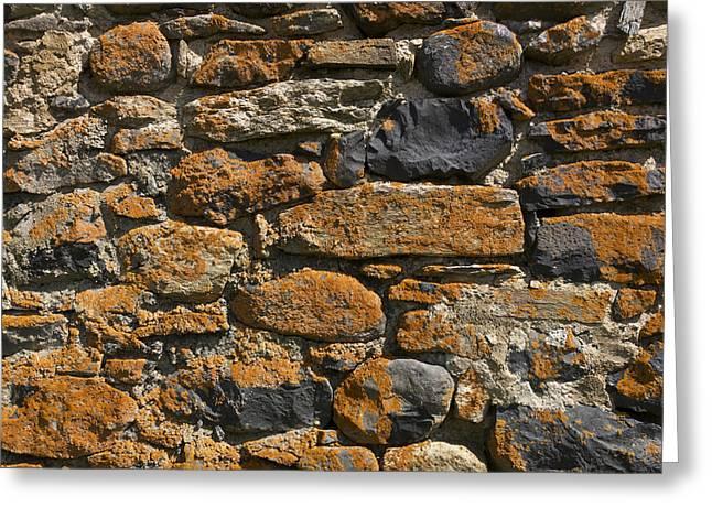 Lichen Image Greeting Cards - Stone wall Greeting Card by Bernard Jaubert