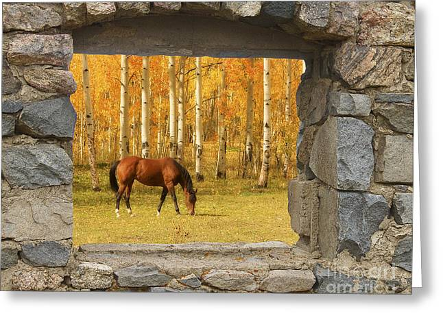 Commercial Space Greeting Cards - Stone Window View and Beautiful Horse Greeting Card by James BO  Insogna