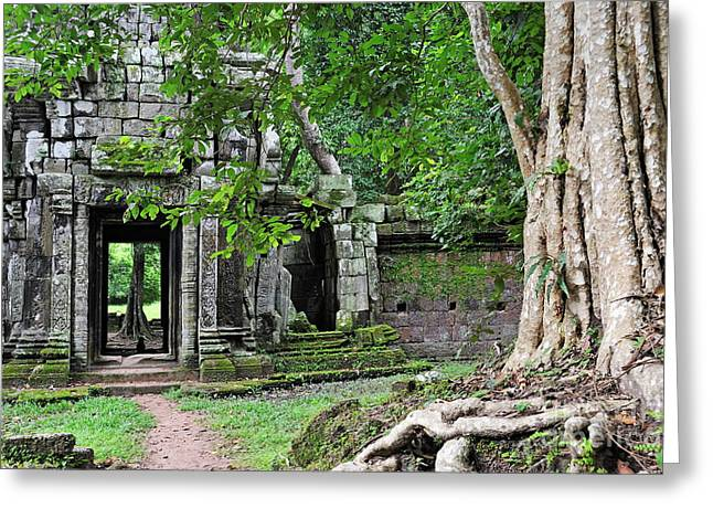 Temple Of Ta Prohm Greeting Cards - Strangler fig tree roots on ruins Greeting Card by Sami Sarkis