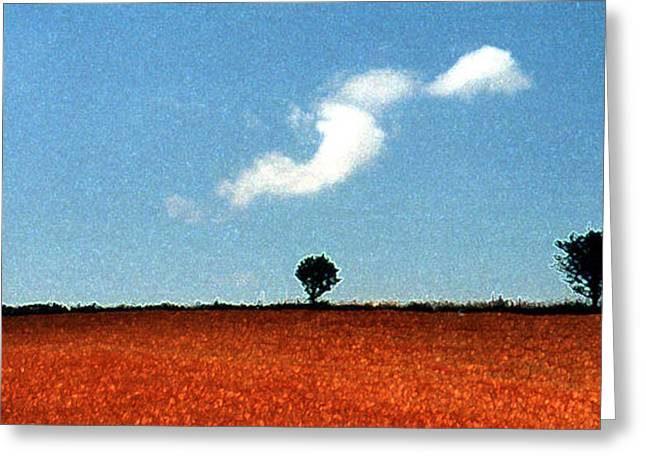 Wheat Field Greeting Cards - Summer Field with Two Trees 2 AE2 Greeting Card by Lyle Crump
