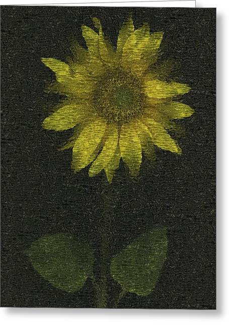 Computer Generated Flower Greeting Cards - Sunflower Greeting Card by Deddeda