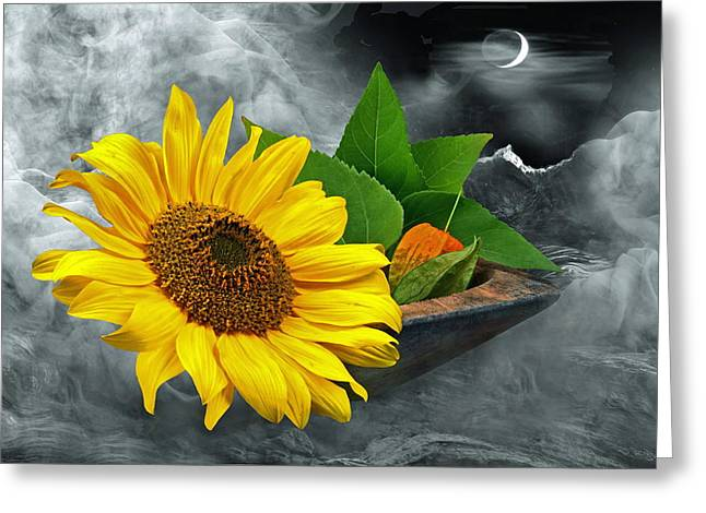 Latern Greeting Cards - Sunflower Greeting Card by Manfred Lutzius