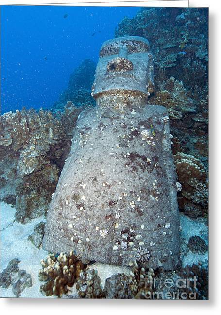 Monolith Greeting Cards - Sunken Moai, Easter Island, Chile Greeting Card by Mathieu Meur