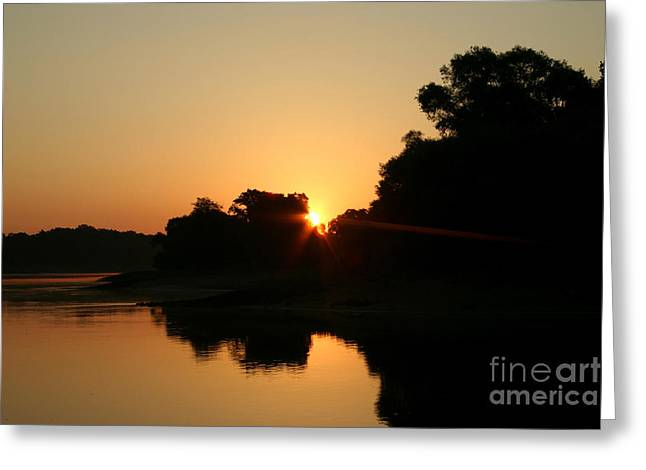 Flood Pyrography Greeting Cards - Sunrise on the River Greeting Card by Torsten Dietrich