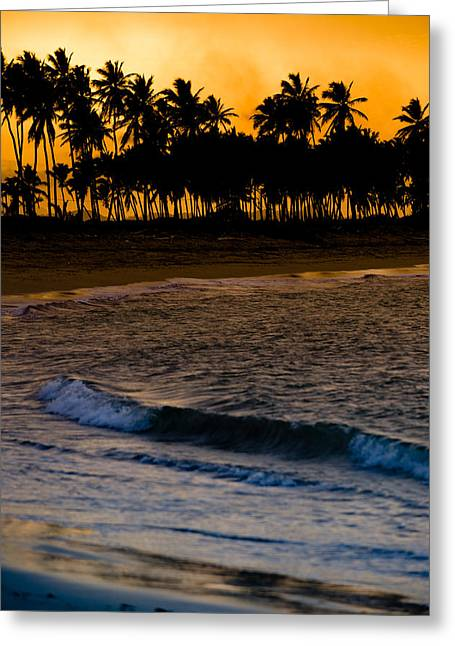 Palm Tree Greeting Cards - Sunset at the Beach Greeting Card by Sebastian Musial
