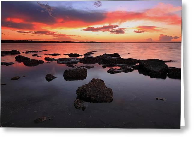 Swan Bay Sunset Greeting Card by Paul Svensen