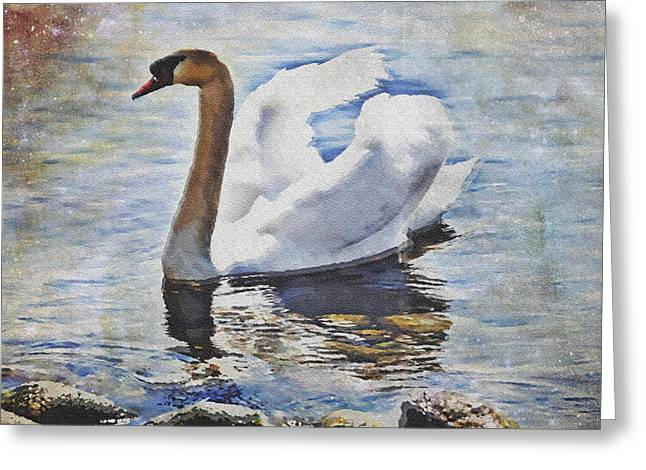 Lake Greeting Cards - Swan Greeting Card by Joana Kruse