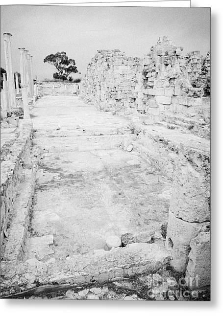 Ammochostos Greeting Cards - Swimming Pools In The Gymnasium And Baths In The Ancient Site Of Old Roman Villa Salamis Greeting Card by Joe Fox