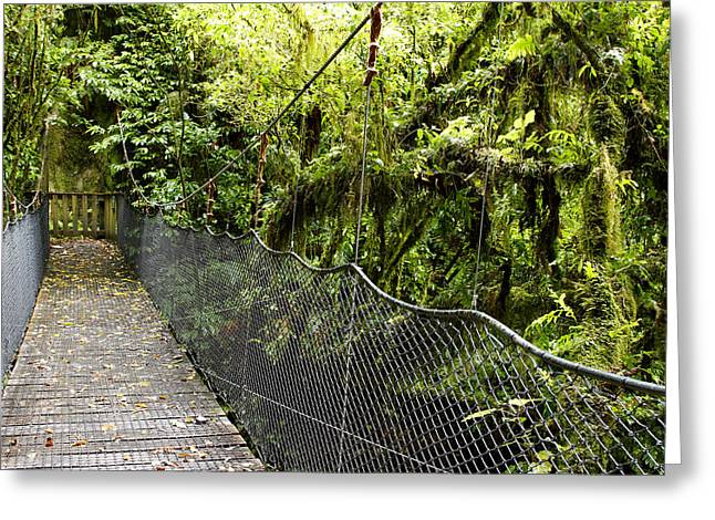 Dense Greeting Cards - Swingbridge Greeting Card by Les Cunliffe