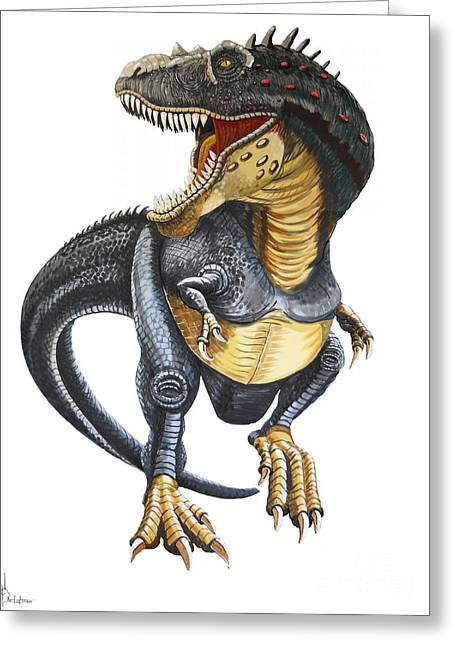 T-rex Greeting Cards - T-Rex Greeting Card by Murphy Elliott