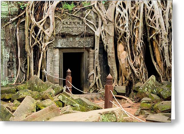 Wat Angkor Greeting Cards - Ta Prohm Temple in Cambodia Greeting Card by Artur Bogacki