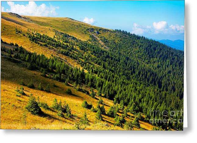 Carpathian Mountains Greeting Cards - Tarcu Mountains Greeting Card by Gabriela Insuratelu