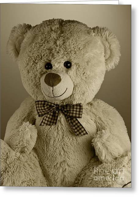 Cuddly Photographs Greeting Cards - Teddy bear Greeting Card by Blink Images