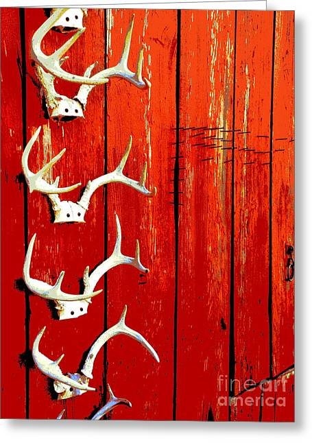 Deer Camp Greeting Cards - Teller Of Tales Greeting Card by Joe Jake Pratt
