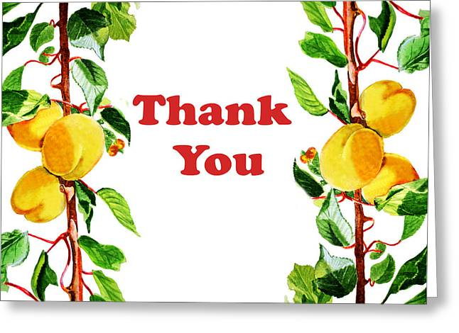 Apricots Paintings Greeting Cards - Thank You Card   Greeting Card by Irina Sztukowski