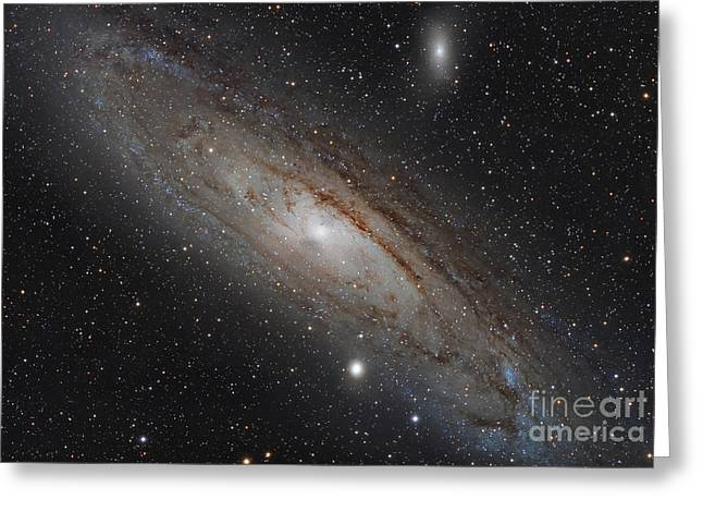 Messier 31 Greeting Cards - The Andromeda Galaxy Greeting Card by Rolf Geissinger