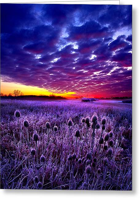 Geographic Greeting Cards - The Audience Greeting Card by Phil Koch