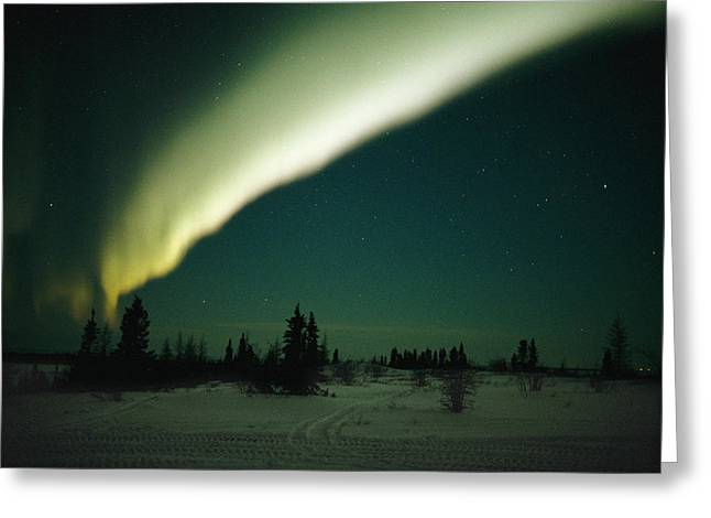 The Aurora Borealis Glows Brightly Greeting Card by Norbert Rosing