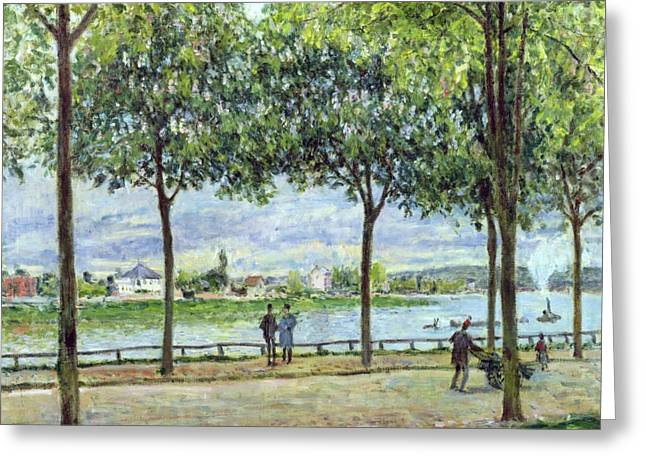 People Walking Greeting Cards - The Avenue of Chestnut Trees Greeting Card by Alfred Sisley