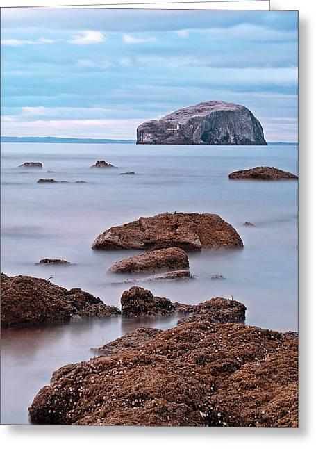 The Bass Rock Greeting Card by Amanda Finan