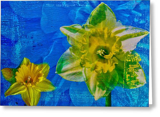 Edmonton Photographer Greeting Cards - The Laughing Daffodil  Greeting Card by Jerry Cordeiro