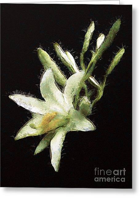 Wildlife Celebration Greeting Cards - The lily Greeting Card by Odon Czintos