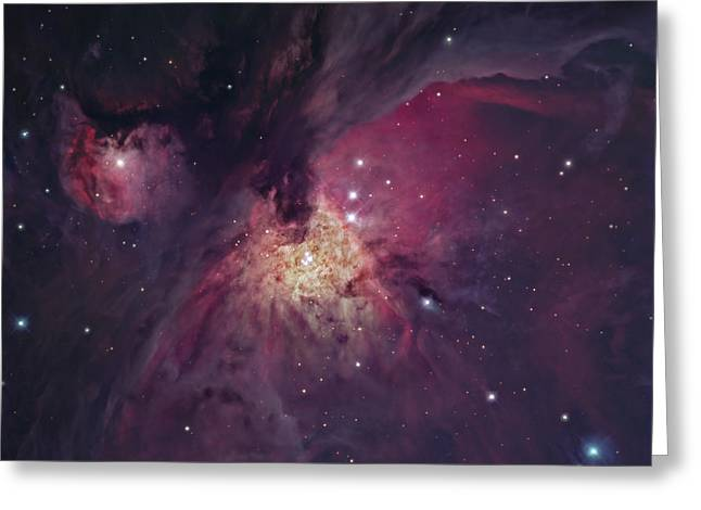 The Orion Nebula Greeting Card by Robert Gendler