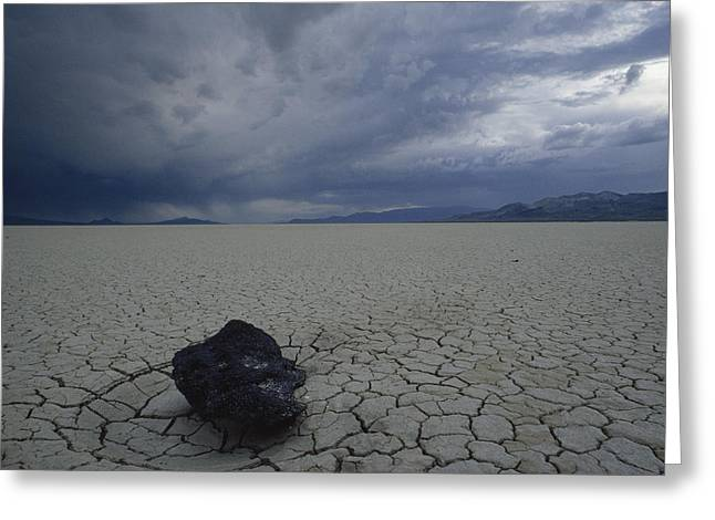 Dry Lake Greeting Cards - The Perfectly Flat, Cracked Desert Greeting Card by James P. Blair