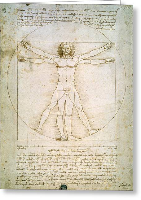 Nude Drawings Greeting Cards - The Proportions of the human figure Greeting Card by Leonardo da Vinci