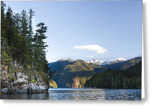 Getting Away From It All Greeting Cards - The Rugged, Rocky Forested Shoreline Greeting Card by Taylor S. Kennedy
