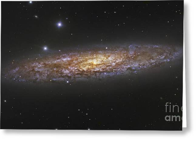 Star Formation Greeting Cards - The Sculptor Galaxy Greeting Card by Robert Gendler