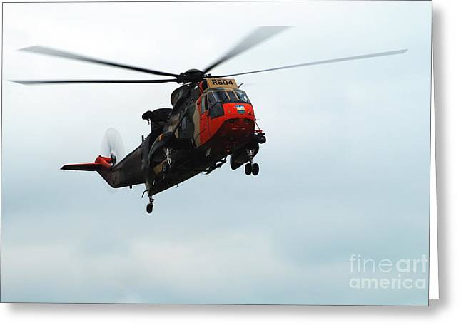 Air Component Greeting Cards - The Sea King Helicopter In Use Greeting Card by Luc De Jaeger