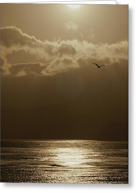 Sunset Scenes. Greeting Cards - The Sun Sets Over The Pacific Ocean Greeting Card by Marc Moritsch