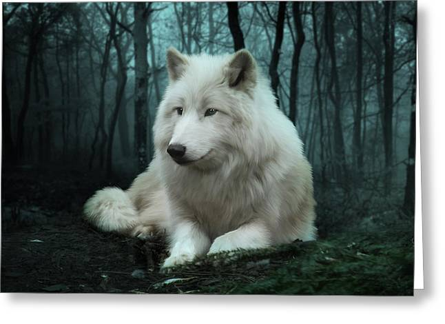 Arctic Dog Greeting Cards - The White Wolf Greeting Card by Julie L Hoddinott