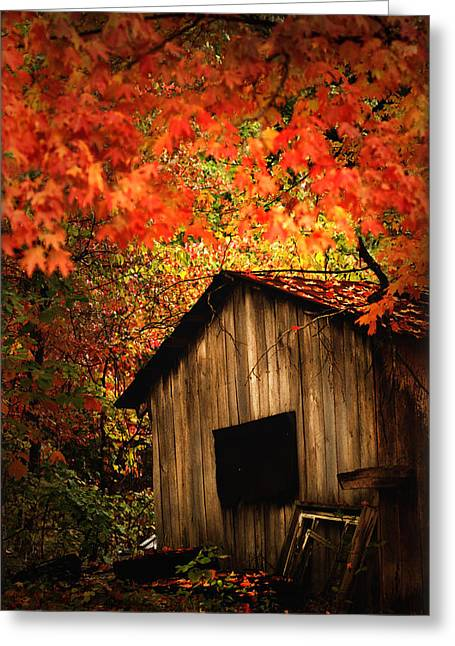 Print On Canvas Greeting Cards - The Wood Shed  Greeting Card by Randall Branham