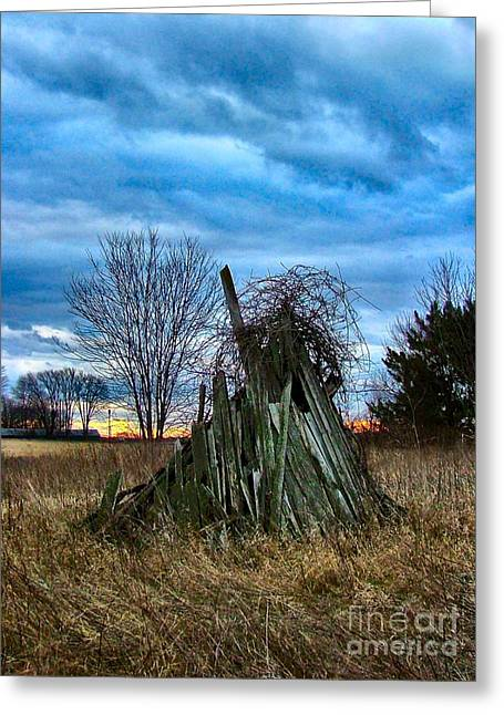 Julie Dant Artography Photographs Greeting Cards - The Woodstack Greeting Card by Julie Dant